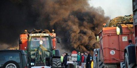 Baisse des prix, mauvais temps : en 2016, la double peine des agriculteurs | Agriculture en Dordogne | Scoop.it