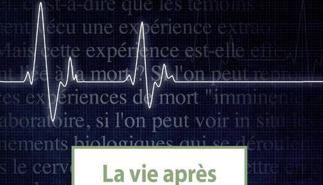 La vie après la mort ? | C@fé des Sciences | Scoop.it