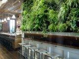 A Green Wall Grows in Brooklyn: Colonie Restaurant Remodelista | Vertical Farm - Food Factory | Scoop.it