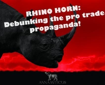 Rhino Horn: Debunking the Pro-Trade Propaganda :: ANNAMITICUS | Forest | Scoop.it
