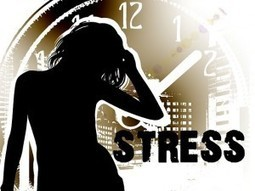 Foods to Eat for Stress Relief | how to cope with stress | Scoop.it