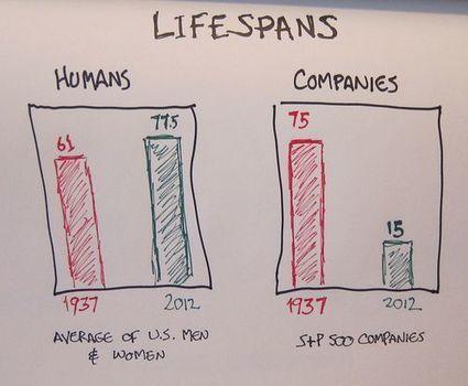 Perché la vita delle imprese si riduce? - Tit for Tat   e-nable social organization   Scoop.it