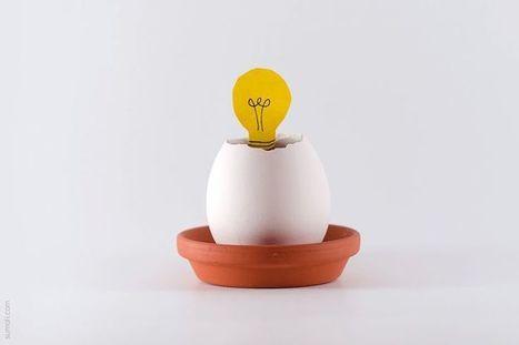 Les 2 types d'entreprises - Réussir Son Entreprise   Innovation, Business Models, Start-up et Strategie   Scoop.it
