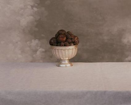 Still Life Photography by Barney Edwards | Photography Blog | Scoop.it