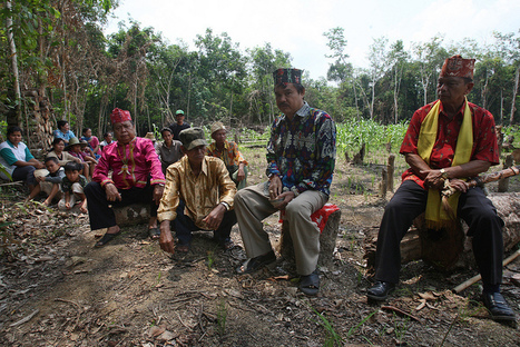 Mapping Indonesia's future: integrating indigenous claims to land | Climate Change Adaptation in Southeast Asia | Scoop.it