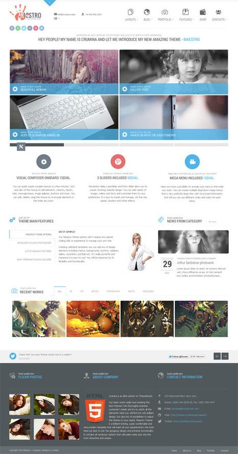 Maestro WordPress Theme | Discounts around the world | Scoop.it