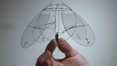 Un robot aux mouvements de méduse pour voler dans les airs - Maxisciences | Web et HighTech | Scoop.it