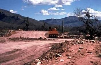 Habitat destruction | 3rd grade pbl | Scoop.it