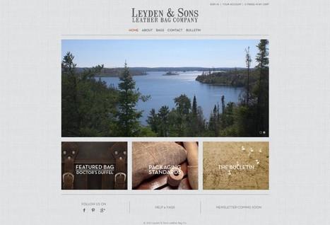 Best Unique Amazon Webstore Designs 2014 | eCommerce Web Design | Scoop.it