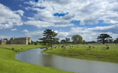 Capability Brown 2016: cedar replanting gets underway at Croome   Horticulture, parks and gardens   Scoop.it