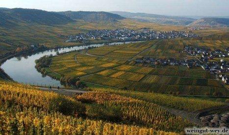 Urlaub an der Mosel: Wein, Wandern, Mosel-Radwanderweg | Urlaub in Deutschland | Scoop.it