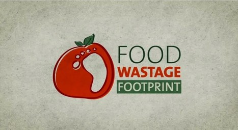 ▶ Food wastage footprint - YouTube | Zero Footprint | Scoop.it