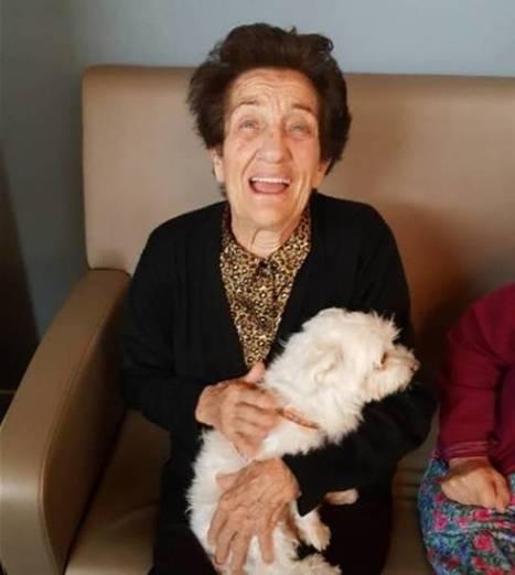 Somos Manada Mixta, una familia de acogida con la que realizar terapias cognitivas | Personas y Animales | Scoop.it