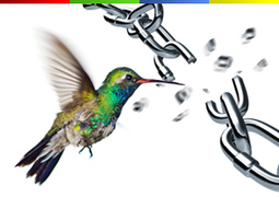 Did Hummingbird Eat Link Building? | SEO | Scoop.it