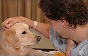 Dogs That Change Lives | Cognitive Cues | Scoop.it