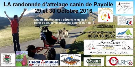 Attelages canins à Payolle les 29 et 30 octobre | Vallée d'Aure - Pyrénées | Scoop.it