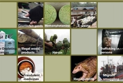 UN Report: $23 Billion In Enviro Crime In Asia | | Wildlife Trafficking: Who Does it? Allows it? | Scoop.it