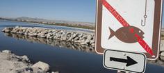 Infractions environnementales : la transaction pénale, une bonne ... - Actu-environnement.com | Veille écologique | Scoop.it
