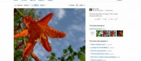 6 milliards de photos sur Flickr ! | SocialWebBusiness | Scoop.it