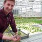 Pescado y verduras en las azoteas de Basilea - swissinfo.ch | Cultivos Hidropónicos | Scoop.it