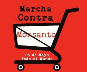 Organizaciones ambientalistas de Costa Rica se unirán a jornada ... | Teoría de las organizaciones | Scoop.it