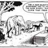 Standardized Tests Alejandro M. Antonio R. Sophie T.
