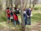Breve Historia de la Educación Ambiental | Educación Ambiental | Scoop.it
