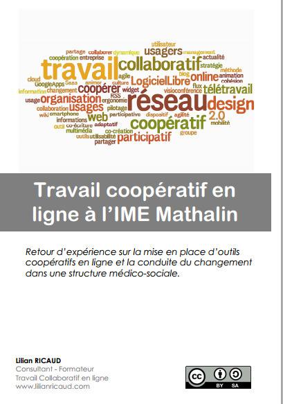 Etude de cas sur le travail coopératif en ligne | Lilian Ricaud | Time to Learn | Scoop.it