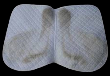Saddle Pad Dust Patterns & Saddle Fit | Horse and Rider Awareness | Scoop.it