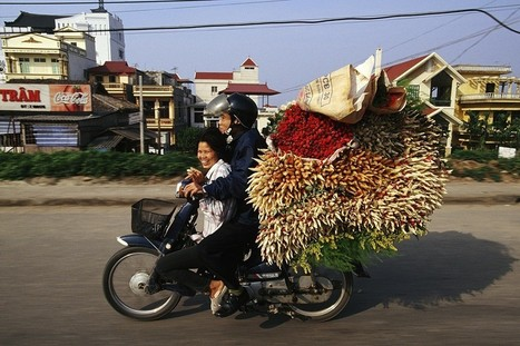 Vietnamese Motorbikes and the Amazing Things They Carry | Ms. Postlethwaite's Human Geography Page | Scoop.it