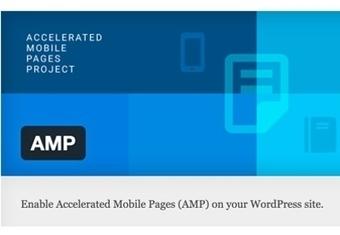 Installing AMP in WordPress | El Mundo del Diseño Gráfico | Scoop.it