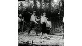 14-18 : exhumation d'un film montrant la mort de masse   Centenaire de la Première Guerre Mondiale   Scoop.it