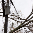 Disaster Response and Utility Preparedness | The Energy Collective | Emergency Management and Preparedness | Scoop.it