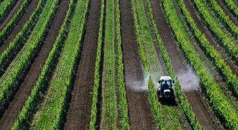 La France toujours incapable de réduire son utilisation de pesticides   Responsabilité humaine et environnement   Scoop.it