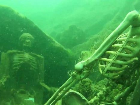 See the Underwater 'Skeletal Remains' That Spooked a Snorkeler | ScubaObsessed | Scoop.it