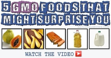 Top 5 GMO Foods That Might Surprise You | Positive Lifestyle | Scoop.it