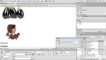 Editing Images in Dreamweaver | Lydia Online Magazine | Scoop.it