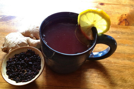 Immunity, Children, and the Magic of Elderberries   DYI- Grow, Make & Locally Sourced   Scoop.it