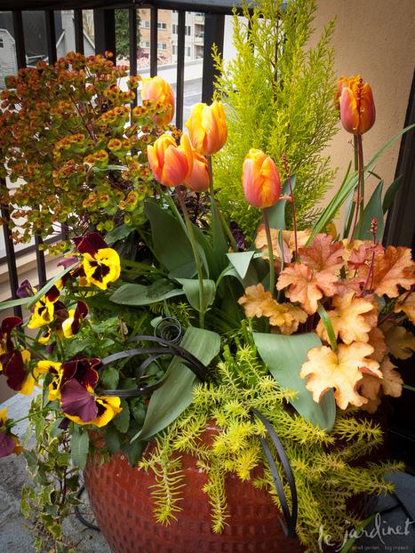 Fine Fragrant Foliage | Annie Haven | Haven Brand | Scoop.it