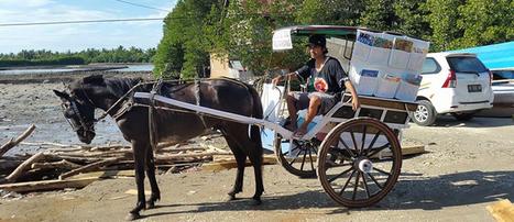 Indonésia: a história de uma biblioteca que viaja a cavalo | Biblioteca | Scoop.it