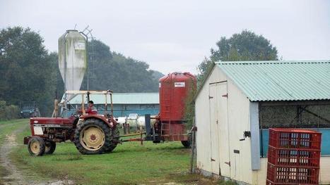 L'Appel des «bouseux» à François Hollande : pour un Pacte rural | Environnement et développement durable, mode de vie soutenable | Scoop.it