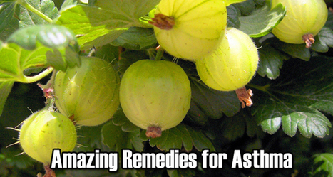 Home Remedies - For Asthma | Health News by RL Healthcare Advisors | Scoop.it