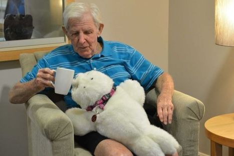 Robot seals comfort dementia patients in nursing homes | innovation seniors | Scoop.it