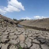 Cafeteros se preparan para el fenómeno del 'Niño' - RCN Radio | Sustain Our Earth | Scoop.it