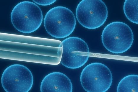 Impresión en 3D de células madre embrionarias | Temas de biologia celular para secundario | Scoop.it