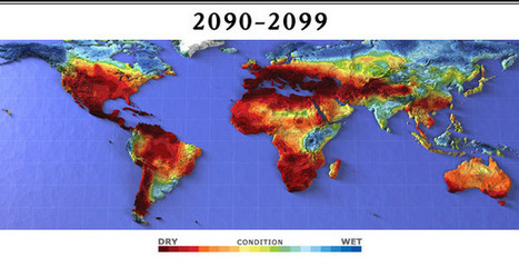 The Scorched Earth | Nature Animals humankind | Scoop.it