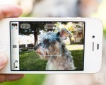 How to take irresistible photos of your pets with your iPhone | Inside Apple | How to Use an iPhone Well | Scoop.it