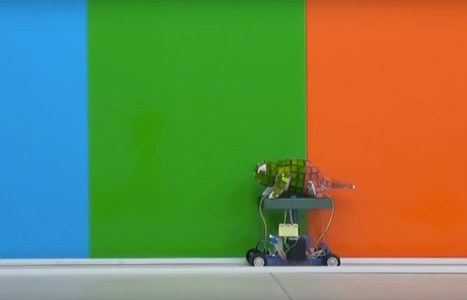 Watch: Chameleon Robot Shows Off Mad Camouflage Skills | WTF Posts | Scoop.it