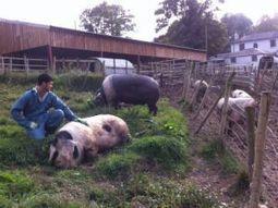 The future of family farming is in our hands | Un potager dans la ville | Scoop.it