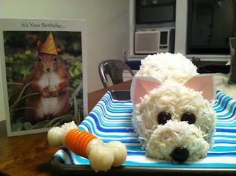 Westie Cake | West Highland White Terrier | Scoop.it